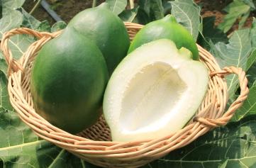 青パパイヤの健康と美容効果は?料理レシピや簡単で美味しい食べ方も!