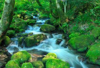 宇多田ヒカルの天然水CMの奥大山ってどこ?登山ロケ地と曲名も調べた